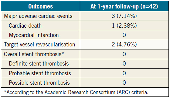 Table 2. Clinical outcomes at 1-year follow-up (n=42).